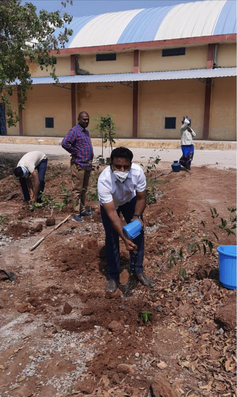 Plant saplings at Head Office/Warehouses on the occasion of Honble C.M. Sri K Chandrashekar Rao Gar